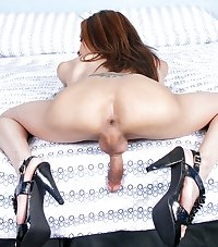 ladyboy ass  lm23